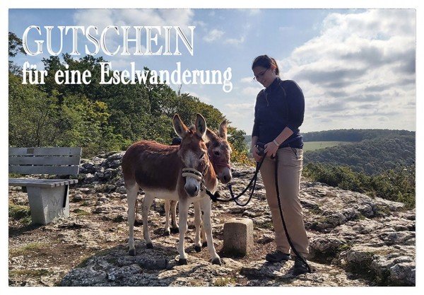 Gutschein für eine Eselwanderung als PDF-Download - 2 Esel, 1 Stunde (Motiv 3)